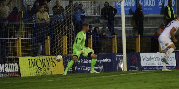 St Albans City vs Havant and Waterlooville papers-7